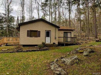 Narrowsburg Single Family Home For Sale: 606 Lake Shore Lane