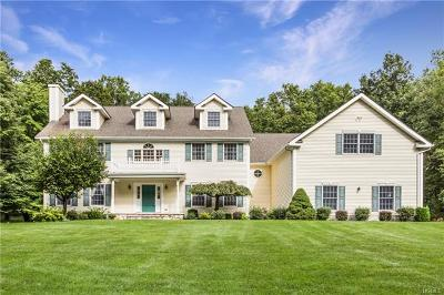 Dutchess County Single Family Home For Sale: 284 Holmes Road
