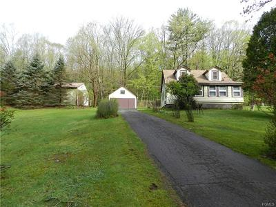 Napanoch Single Family Home For Sale: 93 Yeagerville Road