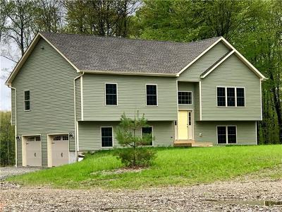 Pine Bush Single Family Home For Sale: 141 Pirog Road