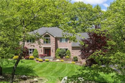 Rockland County Single Family Home For Sale: 17 Col Conklin Drive