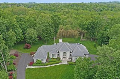Rockland County Single Family Home For Sale: 43 Tranquility Road