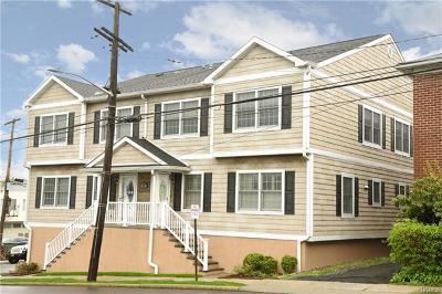 Harrison Condo/Townhouse For Sale: 87 Halstead Avenue #1B