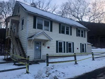 Wassaic Multi Family 2-4 For Sale: 18 Furnace Bank Road