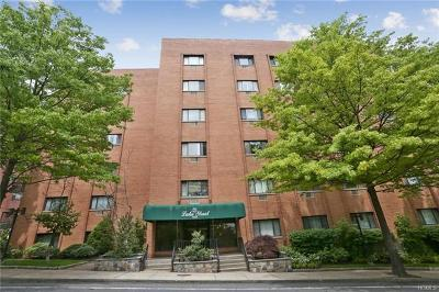 Westchester County Condo/Townhouse For Sale: 21 Lake Street #5E