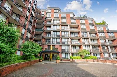 Westchester County Condo/Townhouse For Sale: 50 East Hartsdale Avenue #2C
