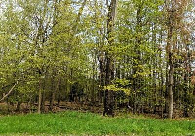 Callicoon, Callicoon Center Residential Lots & Land For Sale: County Route 164