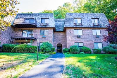 Ossining Condo/Townhouse For Sale: 3 Briarcliff Drive South #6