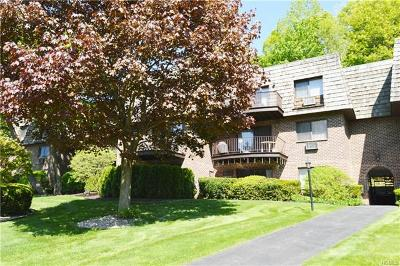 Ossining Condo/Townhouse For Sale: 3 Briarcliff Drive South #34