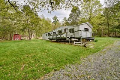 Cuddebackville Single Family Home For Sale: 166 Kennel Road