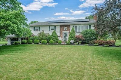 Washingtonville Single Family Home For Sale: 13 Beattie Road