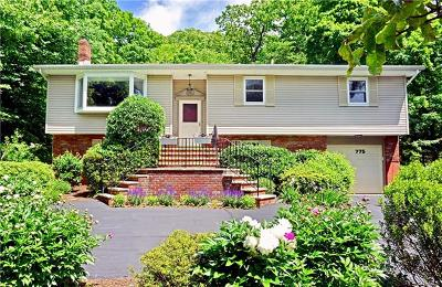 Single Family Home For Sale: 775 Eagle Valley Road