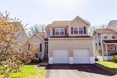 Washingtonville Single Family Home For Sale: 24 Alexander Drive