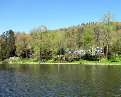 Dutchess County Single Family Home For Sale: 98 Willow Lake Drive