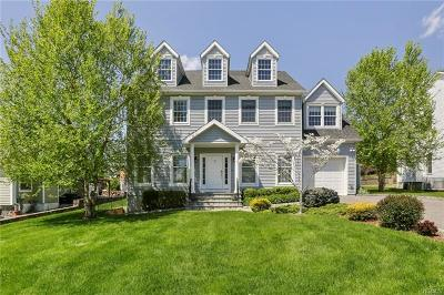 Ossining Single Family Home For Sale: 21 Murray Lane