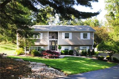 Rockland County Single Family Home For Sale: 9 Assembly Court