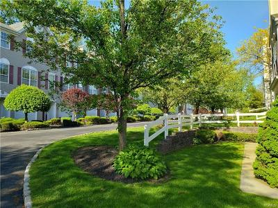Nanuet Condo/Townhouse For Sale: 8 Brook Hollow Drive