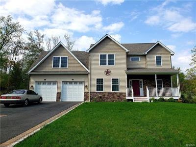 Monroe Single Family Home For Sale: 47 Catskill Avenue
