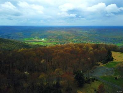 Dutchess County, Orange County, Sullivan County, Ulster County Residential Lots & Land For Sale: 49 Mountainview Road