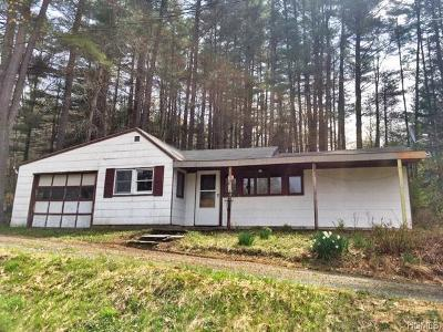 Single Family Home For Sale: 2700 State Route 97