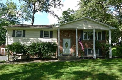 New City Single Family Home For Sale: 3 Amsterdam Road