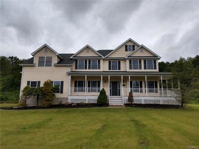 Rock Tavern Single Family Home For Sale: 8 Schwartz Lane
