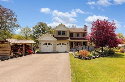 Pine Bush Single Family Home For Sale: 298 Brimstone Hill Road