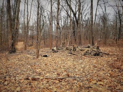 Staatsburg Residential Lots & Land For Sale: 4 Pondview Court