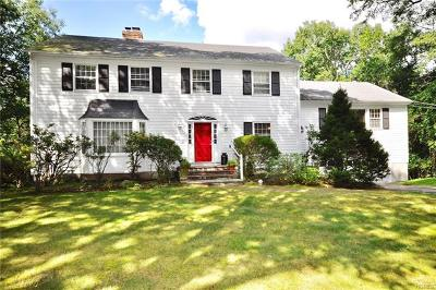 Mount Kisco Single Family Home For Sale: 19 Kitchel Road