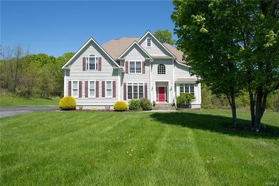Lagrangeville Single Family Home For Sale: 50 Reggies Way
