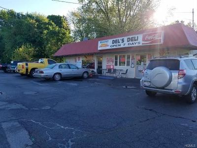 Newburgh Commercial For Sale: 5316 Route 9w