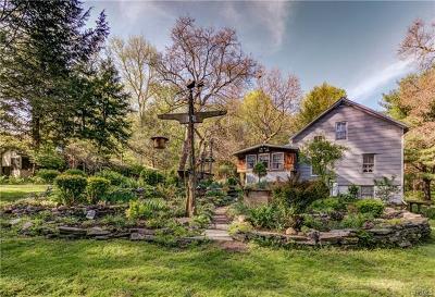 Kingston Single Family Home For Sale: 448 Dewitt Mills Road