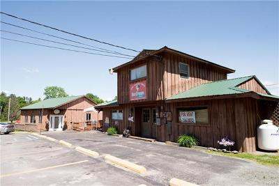 Sullivan County Commercial For Sale: 40 Kitz Road