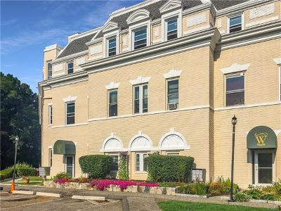 Westchester County Condo/Townhouse For Sale: 17 Waterview Estates