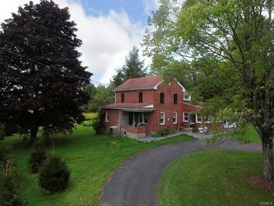 Narrowsburg Single Family Home For Sale: 245 County Route 25