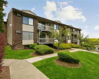 Rockland County Condo/Townhouse For Sale: 213 Country Club Lane
