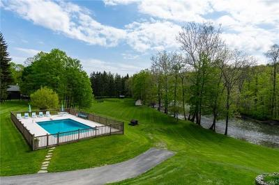 Dutchess County Single Family Home For Sale: 222 Hurley Road