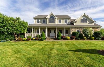 Lagrangeville Single Family Home For Sale: 40 Oakbrook Lane