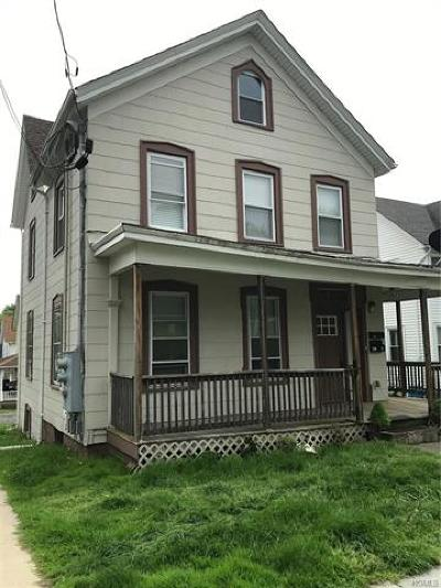 Orange County, Sullivan County, Ulster County Rental For Rent: 67 Ulster Avenue #1