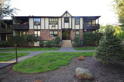 Rockland County Condo/Townhouse For Sale: 761 Sierra Vista Lane