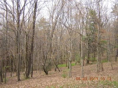Sullivan County Residential Lots & Land For Sale: Edgar Street
