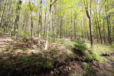 Liberty NY Residential Lots & Land For Sale: $199,000