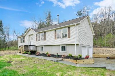 Wassaic Single Family Home For Sale: 29 Poplar Lane