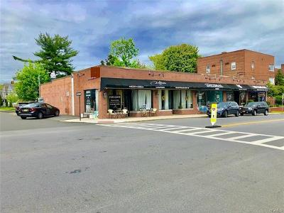 Harrison Commercial For Sale: 60 Halstead Avenue