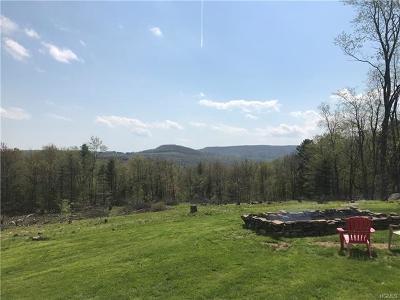 Neversink, Grahamsville, Denning Single Family Home For Sale: 53 Kawlija Road