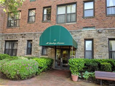 White Plains Condo/Townhouse For Sale: 55 McKinley Avenue #D2-13