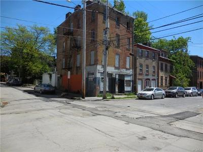 Newburgh Commercial For Sale: 56 Chambers Street