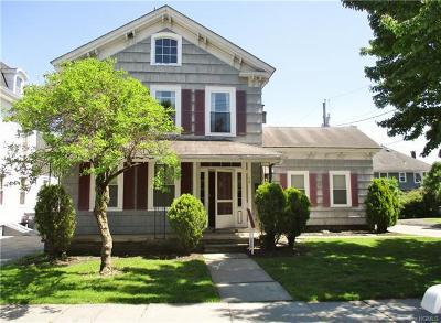 Orange County, Sullivan County, Ulster County Rental For Rent: 17 Elizabeth Street #2F