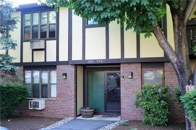 Rockland County Condo/Townhouse For Sale: 990 Sierra Vista Lane