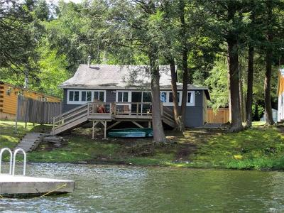 Delaware County Single Family Home For Sale: 535 Lake Road